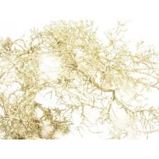 Dry tree, barva platine, 250 g