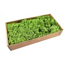 Islandski mah, pomladno zelen, 500 g