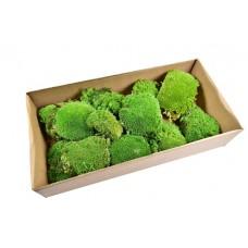 Pol mos, zelen, paket
