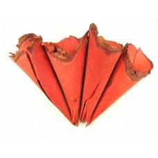 Tulci iz lesa, rdeči, 20 kosov