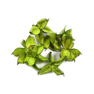 Anton sadeži, sv zelena, 200 g
