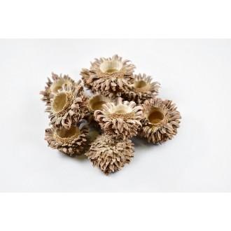 Acorn plodovi, natur, 500 g