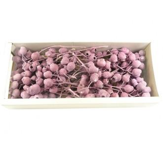 Bellgum na vejicah frosted, barva robide, 40 kosov