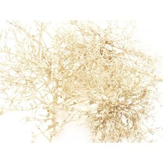 Dry tree, barva perle, 250 g
